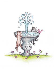 CATS_FOUNTAIN_CARD