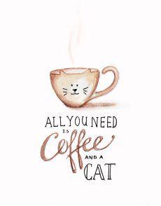 COFFEE_CAT